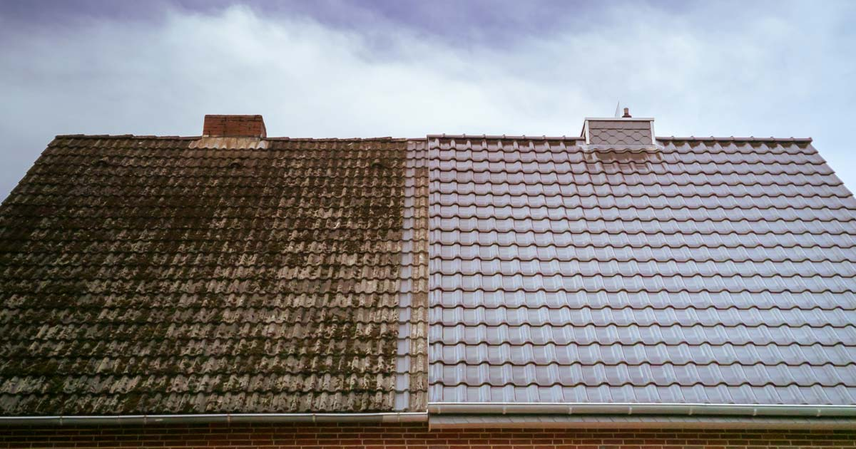 roof cleaning maintenance before after